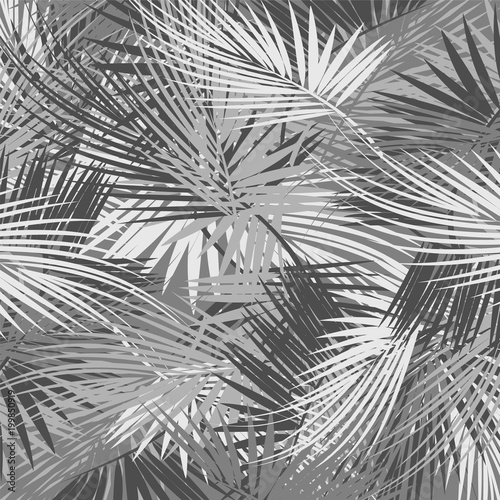 Palm tree branches - 199850919