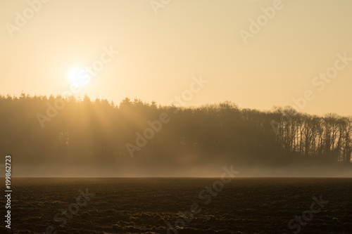 Foto op Canvas Beige country landscape in the morning in the mist