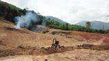 Deforestation. Environmental destruction of rainforest. Borneo forest destroyed for oil palm plantations