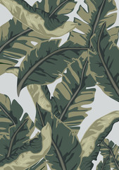 Summer tropical background. Palm and banana leaves, datura flowers