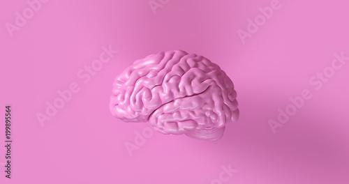 Różowa ludzkiego mózg 3d modela Anatomiczna ilustracja