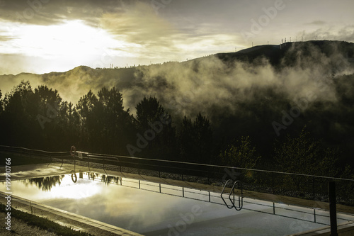 Aluminium Grijze traf. Misty Forest by the Pool