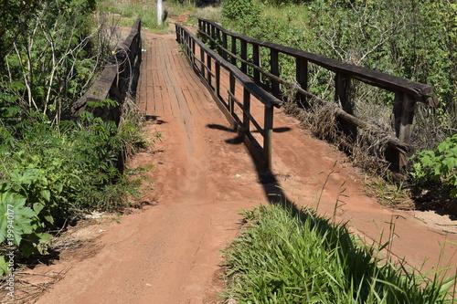 Fotobehang Weg in bos 1