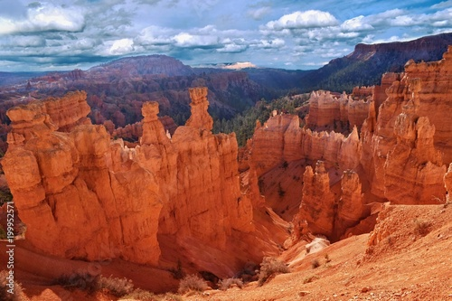 Fotobehang Rood traf. Rocky landscape in Bryce Canyon, Utah, USA