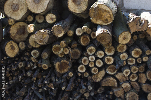 Foto op Aluminium Brandhout textuur firewood stacked under the wall