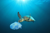 Plastic pollution in ocean problem. Sea Turtle eats plastic bag - 200011924