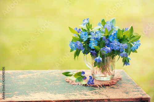 Foto Murales Vintage bouquet of periwinkle flowers outdoors on grunge wooden table against green blurred natural background