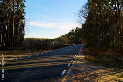 Fotobehang Weg in bos Droga wiodąca przez las
