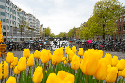 Foto op Aluminium Amsterdam Amsterdam cityscape with tulips on the foreground, the Netherlands.