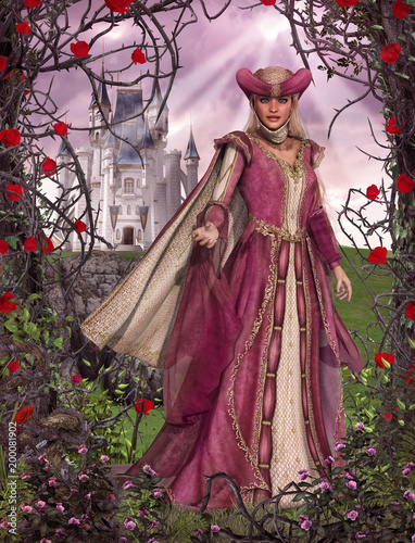 Fairy Tale Princess Sleeping Beauty Rose Castle - 200081902