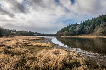 Paysage du lac du Jaunay asséché en hiver (Vendée, France)