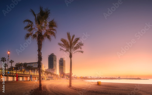 Foto op Canvas Barcelona Dramatic sunrset on beach of Barcelona with palm