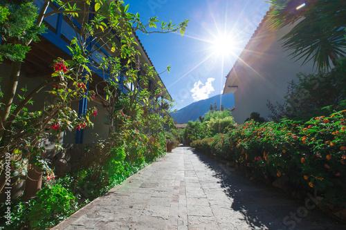 Poster Grijze traf. Garden landscape
