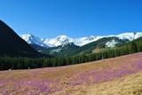 Tatry Zachodnie wiosną