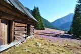 Drewniana chata w Tatrach - 200114137