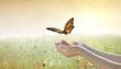 Girl releasing a butterfly over an autumn field of flowers