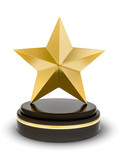bronze star trophy