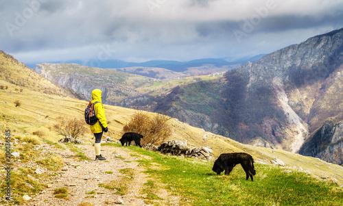 Foto Murales Hiking in Bosnian mountains