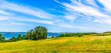 Landschaft mit Mohnblumen