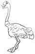 ostrich bird animal character cartoon coloring book