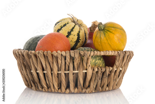 Orange and green pumpkins in basket