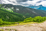 Landscape of mountains covered forest, view from hiking trail in Carpathians