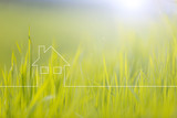 Conceptual eco house healthy living copy space background with blurred sunny meadow texture. - 200227748