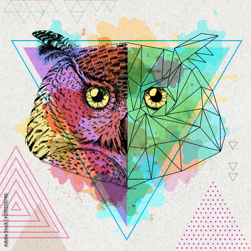 Hipster animal realistic and polygonal owl on artistic watercolor background