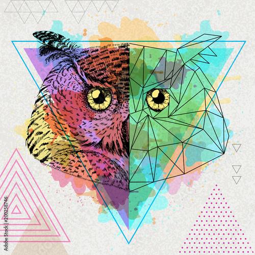 Foto op Plexiglas Uilen cartoon Hipster animal realistic and polygonal owl on artistic watercolor background