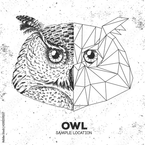 Hipster animal realistic and polygonal owl face. Triangle animal