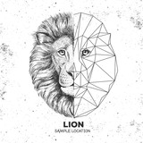 Hipster animal realistic and polygonal lion face. Triangle animal - 200259747