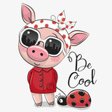 Cute Pig with sun glasses - 200261964