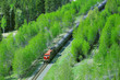 Freight train moves through Canadian Rockies.