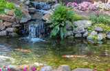 Koi swim down stream past waterfall surrounded by flowers and greenery - 200284708