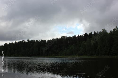 Foto op Plexiglas Zwart beautiful lake landscape with trees and herbs