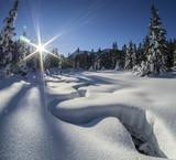 sunlit winter alpine meadow