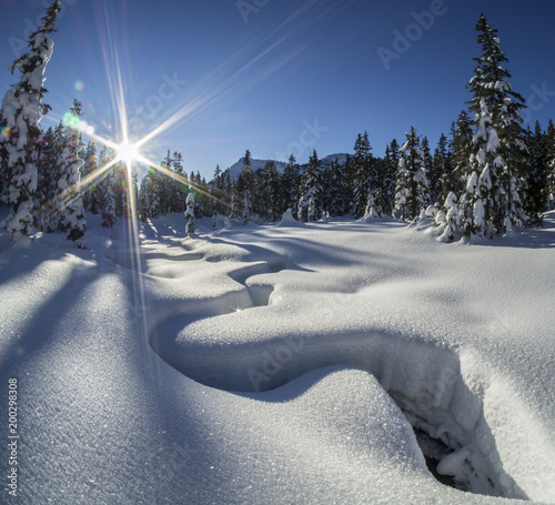 sunlit winter alpine meadow