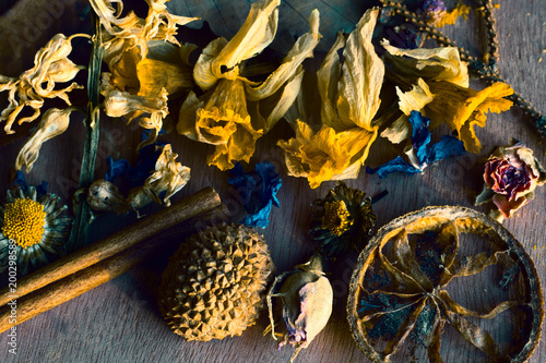 Fotobehang Boeddha Flowers and plants