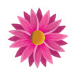 cute violet flower decorative icon