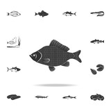 perch icon. Detailed set of fish illustrations. Premium quality graphic design icon. One of the collection icons for websites, web design, mobile app