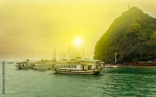Fotobehang Zwavel geel Tursit tour boats, Ha Long Bay, Vietnam