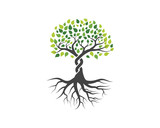 Logos of green Tree leaf vector