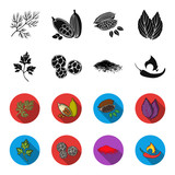 Ptrushka, black pepper, paprika, chili.Herbs and spices set collection icons in black,flet style vector symbol stock illustration web. - 200354962