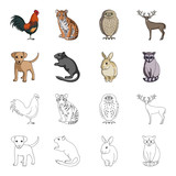 Puppy, rodent, rabbit and other animal species.Animals set collection icons in cartoon,outline style vector symbol stock illustration web.