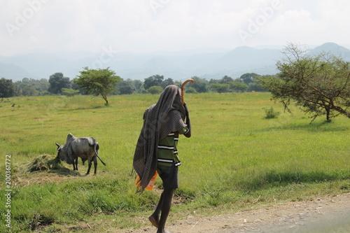 Fotobehang Paarden Ethiopia