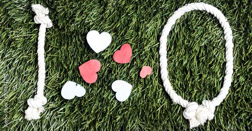 Foto op Plexiglas Schip I love Q transcription made from ropes on grass background.