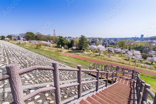 Keuken foto achterwand Amusementspark 狭山公園の堤防からの眺望