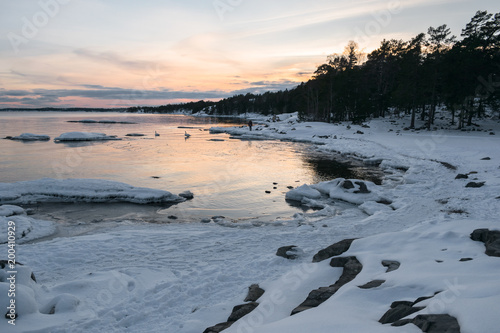 Foto op Canvas Stockholm Sunset at Bjorno nature reserve archipelago in Stockholm