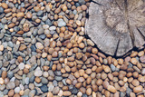 Abstract background, pebble stones and stamped concrete on the floor - 200415799