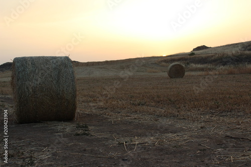 Foto op Canvas Beige Countryside sunset